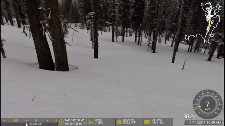 Snowbike in Trees at Andies Prairie 4-14-2017